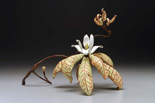 Ceramic Magnolia - Michael Sherrill