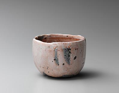 Shozo Michikawa