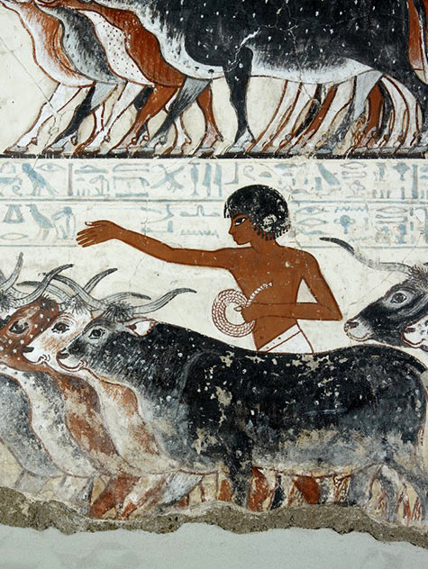 Painting from the tomb chapel of Nebamun