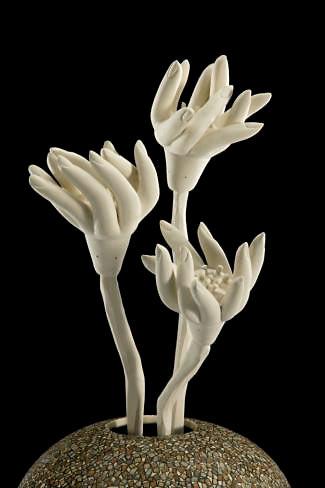 325px-488px-human-flowers---fingers-(de
