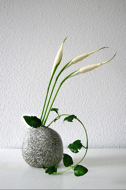 Flickriver--Otomodachi-s-photos-Ikebana-'Creepy-crawley'