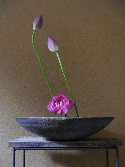 Ikebana by Atsushi