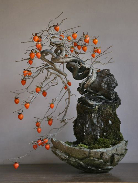 Persimmon-bonsai-tree----mt-satsuki.tumblr.com