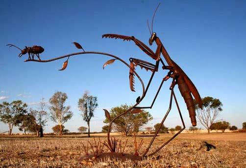 Jordan-Sprigg---Preying-Mantis Australian sculptior