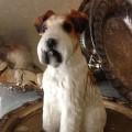 Vintage porcelain Wirehair Fox-Terrier Statue---sweettweets---etsy