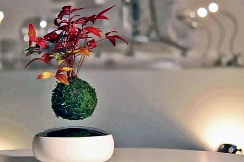 floating-air-bonsai-garden-by-hoshinchu-defies-gravity-designboom-