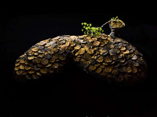 Sakata-Jinnai.-Chain-Of-Life bonsai sculpture
