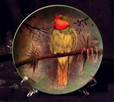 Hand-Painted-Stoneware-Pottery-Plate-Beautiful-Superb-Parrot--