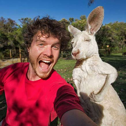 Alan Dixon meeting a white kangaroo