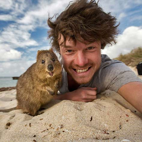 animal-selfie-quokka-(1)Irishman-Allan-Dixon-(who-lives-in-Australia)-seems-to-have-mastered-the-art-of-selfie-taking-with-critters
