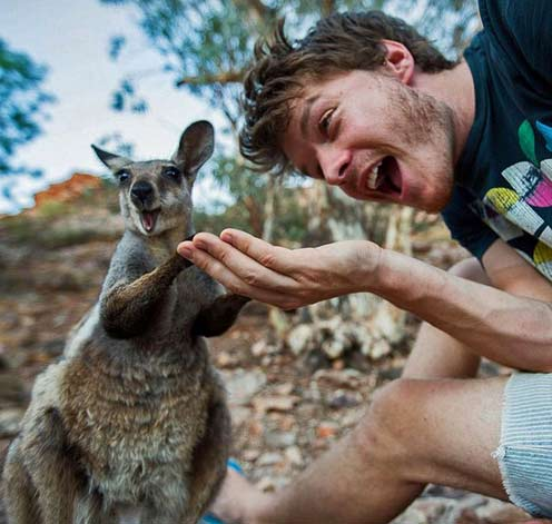 animal-selfies-allan-dixon-milinf kangaroo