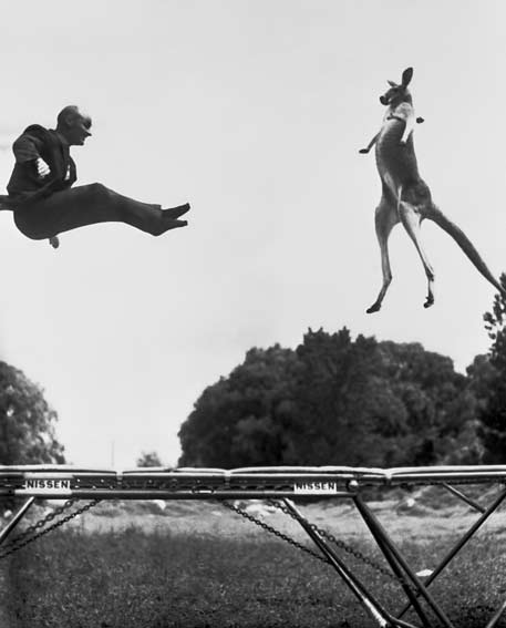 George-Nissen-(1914-2010)-•-Inventor-of-the-Trampoline-jumping-with-his-Kangaroo