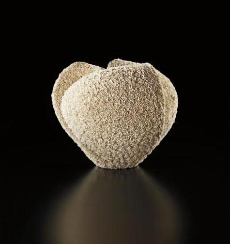 Tane '- (Seed), - circa-2013-Makiko-Hattori