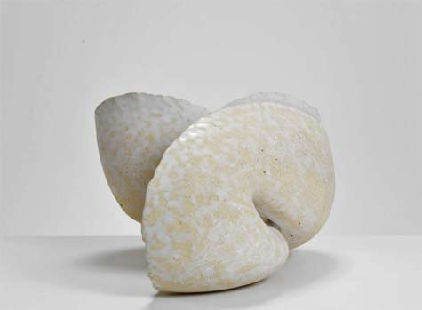 Zung-Lung-Tsai-Phototropism-1408,-2014---International-Ceramics---Erskine-Hall-----Coe