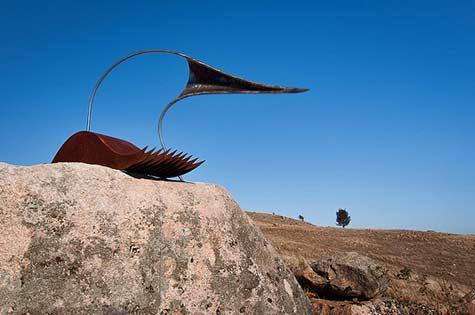 nicholas-uhlmann-bird-spirit-vessel-bill-doyle