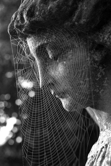 spider-web-on-face-of-statue