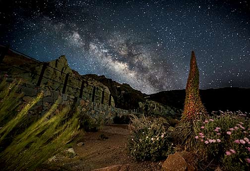 fotografia nocturna1