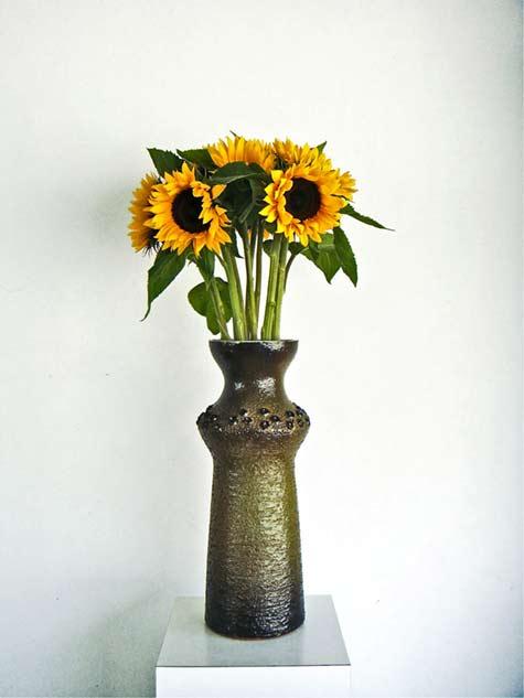 perignem-vaas-zonnebloem-helianthus-salicifolius