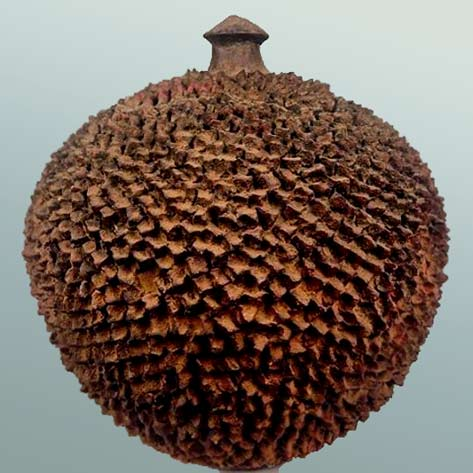 Lobi terracotta storage vessel, Burkina Faso