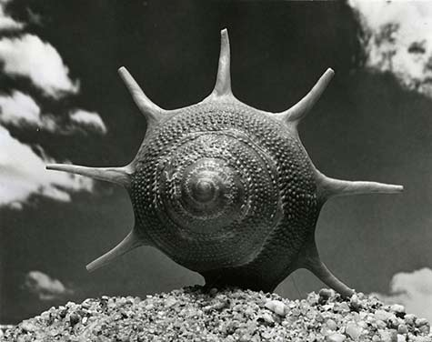 Andreas-Feininger-photography