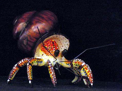 carved-ivory-nut-hermit-crab hand painted