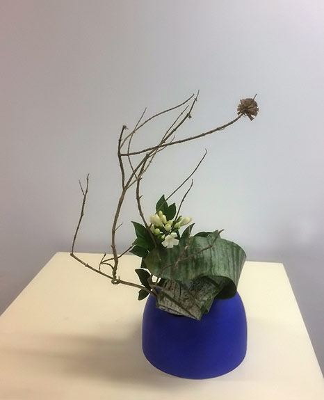Pat's Ikebana - Bromeliad-leaves-and-blossom----2016