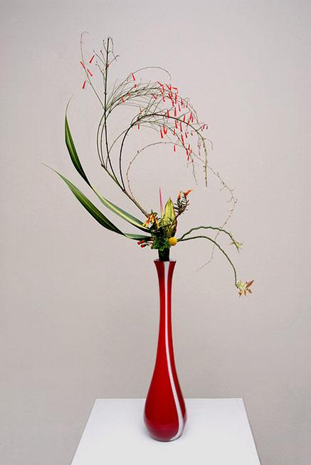 Ikebana Vision Of Transcendence