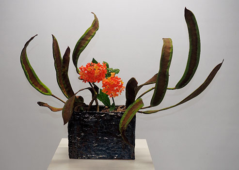 Pats-Ikebana-Poinchiana-Podas-and-Ixora-2015
