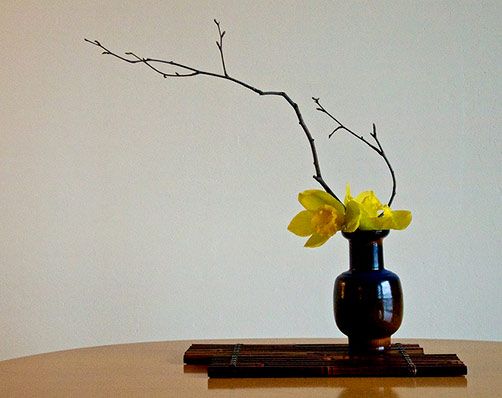 The Nordic Lotus Ikebana Blog - Birch branches and Cymbidium