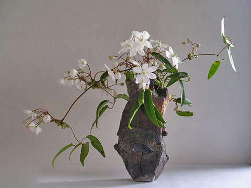 white flower ikebana by Gunter Black,-Jochen-Ruth vase