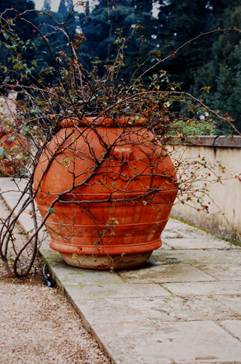 large terracotta outdoor planter